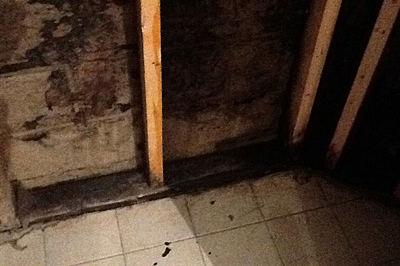 Basement with mold